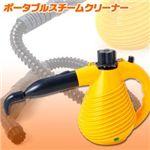 steamcleaner.jpg